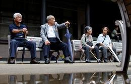 Lần đầu tiên số người hơn 100 tuổi tại Nhật Bản vượt mức 80 nghìn người