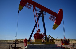 IEA và OPEC hạ dự báo nhu cầu dầu thế giới năm 2020