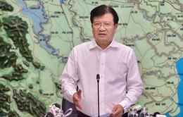 Phó Thủ tướng: Không được chủ quan mà cần chủ động ứng phó bão số 5