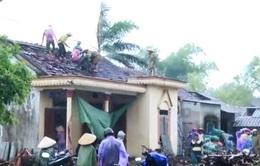 Hà Tĩnh thiệt hại hơn 700 triệu đồng do bão số 5