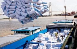 Giá gạo tăng nhưng sản lượng xuất khẩu lại giảm mạnh