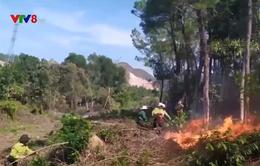 Liên tiếp xảy ra cháy rừng do nắng nóng tăng cao