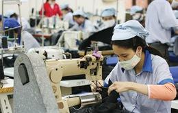 Việt Nam - Đối tác tiềm năng của các quốc gia châu Mỹ