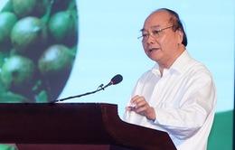 """Thủ tướng Nguyễn Xuân Phúc: Mắc ca Việt Nam có thể """"đi sau, về trước"""" để đứng đầu"""