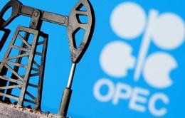 """""""Vàng đen"""" mất giá, tương lai nào cho OPEC?"""