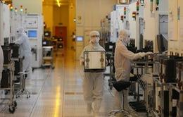 Các nhà sản xuất chip Trung Quốc lo ngại sẽ trở thành mục tiêu của Mỹ