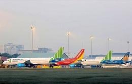 Giá, phí hàng không giảm tới 50%