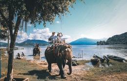 Tour giá rẻ ồ ạt, người Việt có sẵn sàng đi du lịch trở lại?