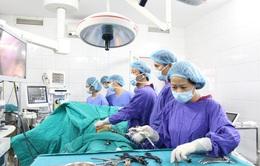 Nội soi lấy 9 viên sỏi trong ống mật chủ bệnh nhân