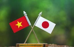 Chuyên gia JETRO: Chính phủ mới ở Nhật Bản sẽ không thay đổi chính sách đối ngoại với Việt Nam
