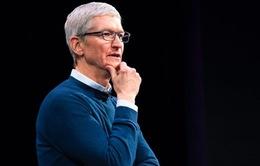 Bộ não CEO Apple vận hành thế nào ở những thời điểm quan trọng?