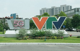 Thủ tướng Nguyễn Xuân Phúc gửi thư chúc mừng 50 năm ngày phát sóng chương trình truyền hình đầu tiên của Đài THVN