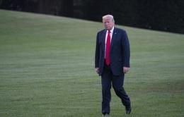 Ông Trump mất 600 triệu USD vì COVID-19