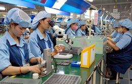 Nhiều nhà đầu tư Nhật Bản đang tiến vào Việt Nam