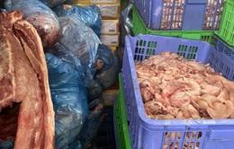 Phát hiện hơn 1,46 tấn thịt lợn đã qua sơ chế chảy nước, bốc mùi hôi thối