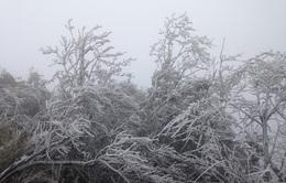 Miền Bắc tiếp tục đón đợt không khí lạnh tăng cường mới