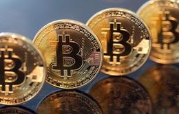 """""""Sáng nắng, chiều mưa"""", Bitcoin vẫn chỉ là cuộc chơi của """"cá mập""""?"""