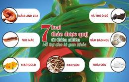 7 thảo dược quý tự nhiên giúp bảo vệ và giảm các triệu chứng bệnh về gan