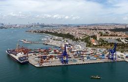 Lời giải nào cho cuộc khủng hoảng container rỗng?