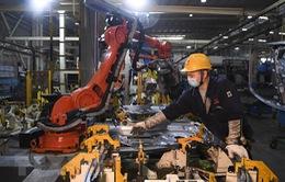 Trung Quốc sẽ trở thành hình mẫu tái cơ cấu nền kinh tế