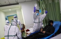 Gần 5% người từng mắc COVID-19 ở Ấn Độ tái dương tính với SARS CoV-2