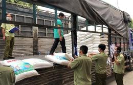 Phát hiện 45 tấn bột ngọt nghi nhập lậu
