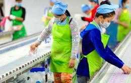 FDI toàn cầu giảm mạnh trong năm 2020