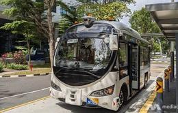 Singapore thử nghiệm xe bus tự lái