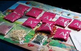 Bắt giữ đối tượng mua bán 1 kg ma túy ở khu vực biên giới