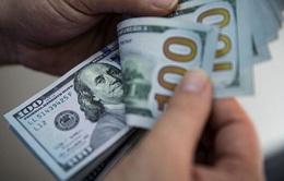 Bước sang năm mới 2021, đồng USD chịu sức ép đi xuống