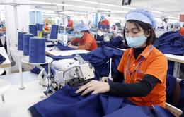 32,1 triệu người bị mất việc, giãn việc, giảm thu nhập... do COVID-19