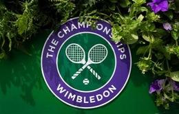Ban tổ chức Wimbledon 2021 muốn giải đấu có khán giả