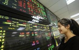 Thị trường chứng khoán khởi sắc ngày cận Tết Nguyên đán
