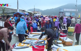 Ngư dân Hà Tĩnh vươn khơi bám biển cầu lộc đầu năm