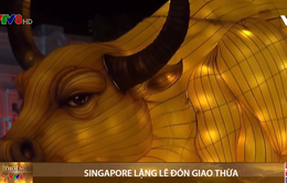 Singapore lặng lẽ đón giao thừa