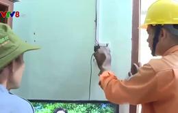 Phú Yên: Đổi thay ở những ngôi làng có điện lưới quốc gia