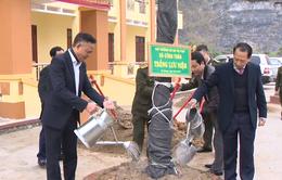 Hà Giang chuẩn bị gần 1 triệu cây giống chất lượng cho chương trình 1 tỷ cây xanh