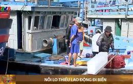 Bình Định: Lại lo thiếu lao động đi biển