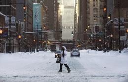 """Các doanh nghiệp """"đóng băng"""" trong bão tuyết kỷ lục tại Mỹ"""