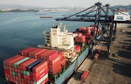 Xuất nhập khẩu đạt hơn 1,6 tỷ USD trong dịp Tết