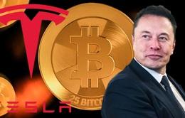 Tesla thu lời từ Bitcoin trong 1 tháng nhiều hơn tiền bán ô tô 1 năm