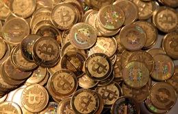 Bộ trưởng Tài chính Mỹ: Đồng Bitcoin tiềm ẩn nhiều rủi ro