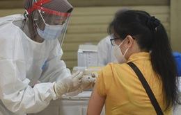 WHO khởi động chương trình bồi thường cho trường hợp gặp phản ứng phụ do vaccine