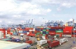 Đến 2025, tỷ trọng đóng góp của dịch vụ logistics vào GDP đạt 5 - 6%