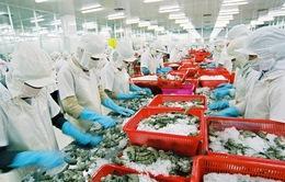 Ngành thủy sản dự báo tăng trưởng khả quan trong năm 2021
