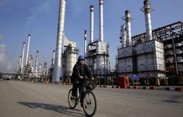 Giá dầu tiến sát mốc cao nhất trong vòng 1 năm