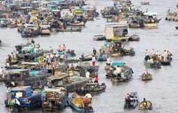 """4 trở lực """"kìm chân"""" Đồng bằng sông Cửu Long"""