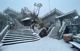 VIDEO Tuyết phủ trắng đỉnh Fansipan, có nơi dày hơn nửa mét
