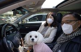 Hàn Quốc cho xét nghiệm COVID-19 với cả thú cưng