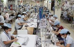 Tổng điều tra kinh tế 2021 - Số liệu nền tảng cho sự phát triển